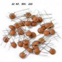 CONDENSADOR CERAMICO    20   NF   50 V. 203