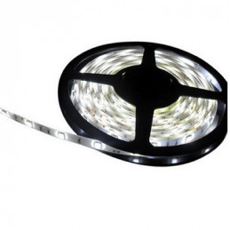 CINTA LED  5 MTS. 12 VOLT 60LED/METRO SMD 3528 BLANCO CALIDO