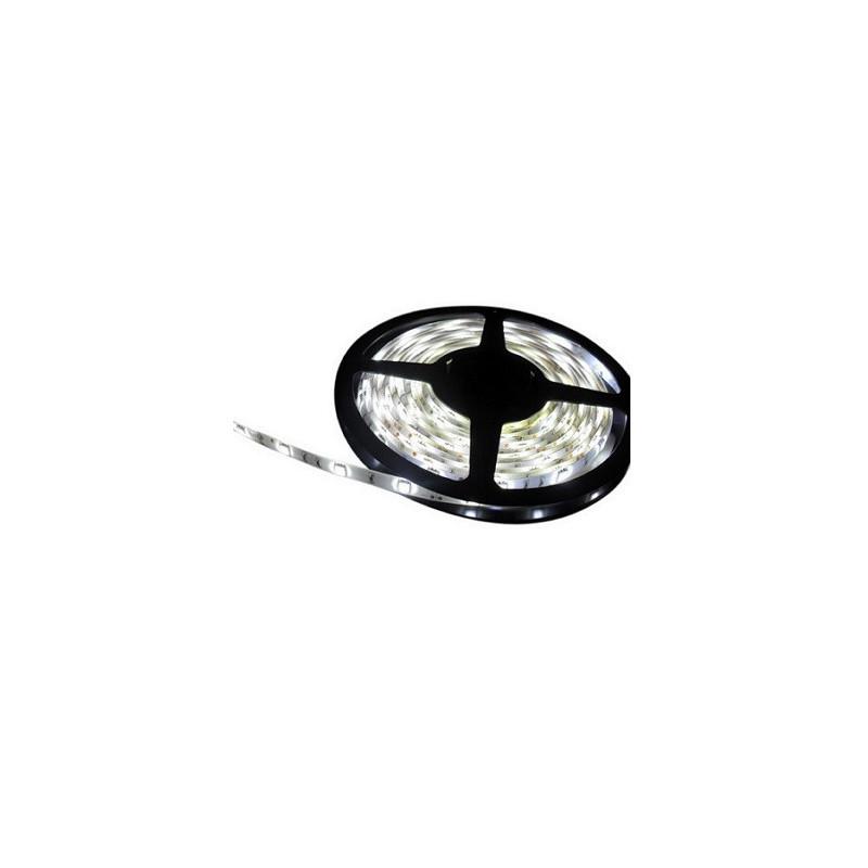CINTA LED  5 MTS. 12 VOLT 60LED/METRO SMD 3528 BLANCO CALIDO