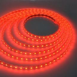 CINTA LED  1.00 MTS 220...
